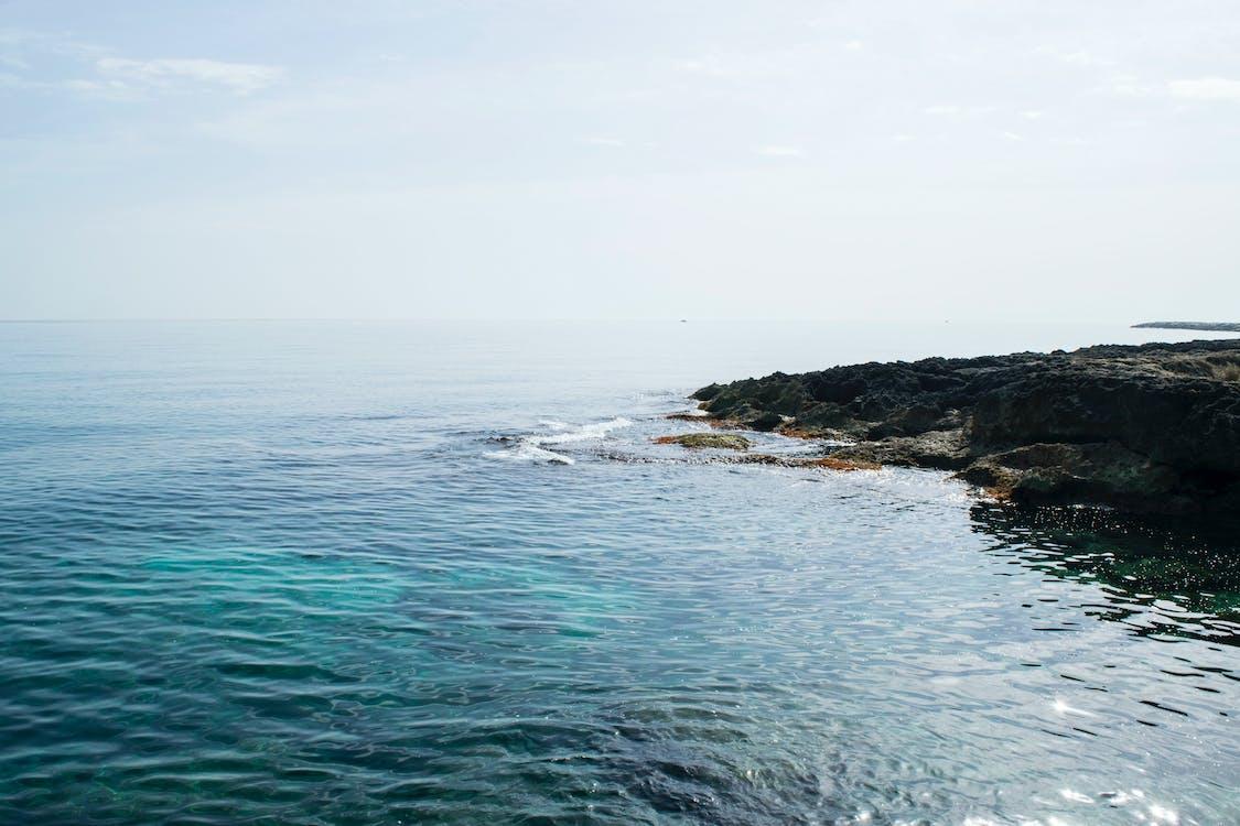 fredelig, hav, havkyst