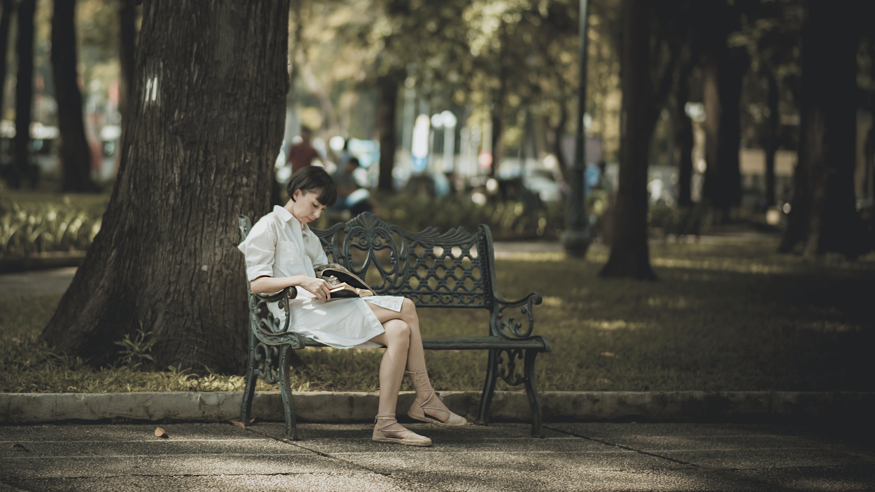 Photo of Woman Sitting in the Bench Near Tree