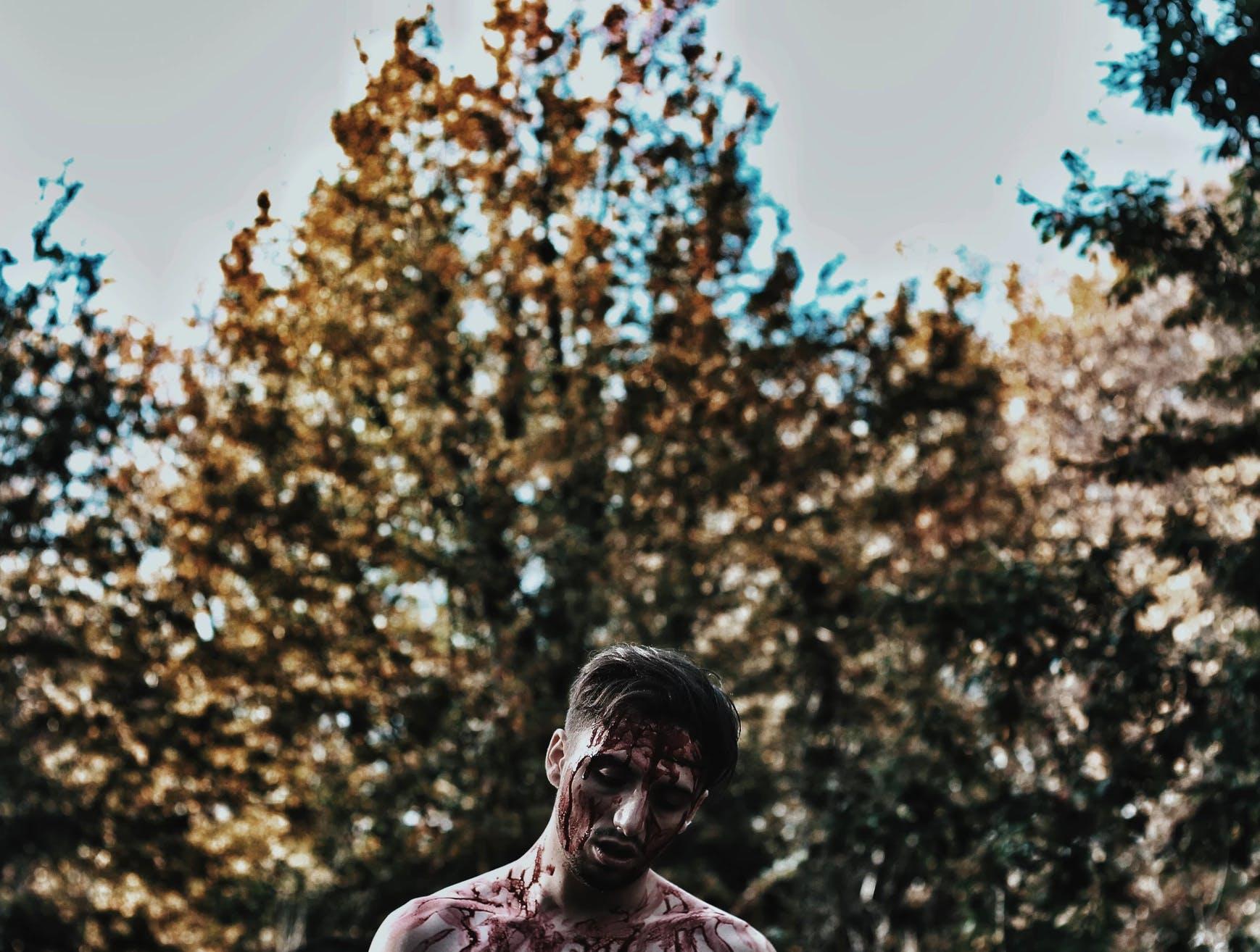 Kostenloses Stock Foto zu bäume, betrübt, blut, depression