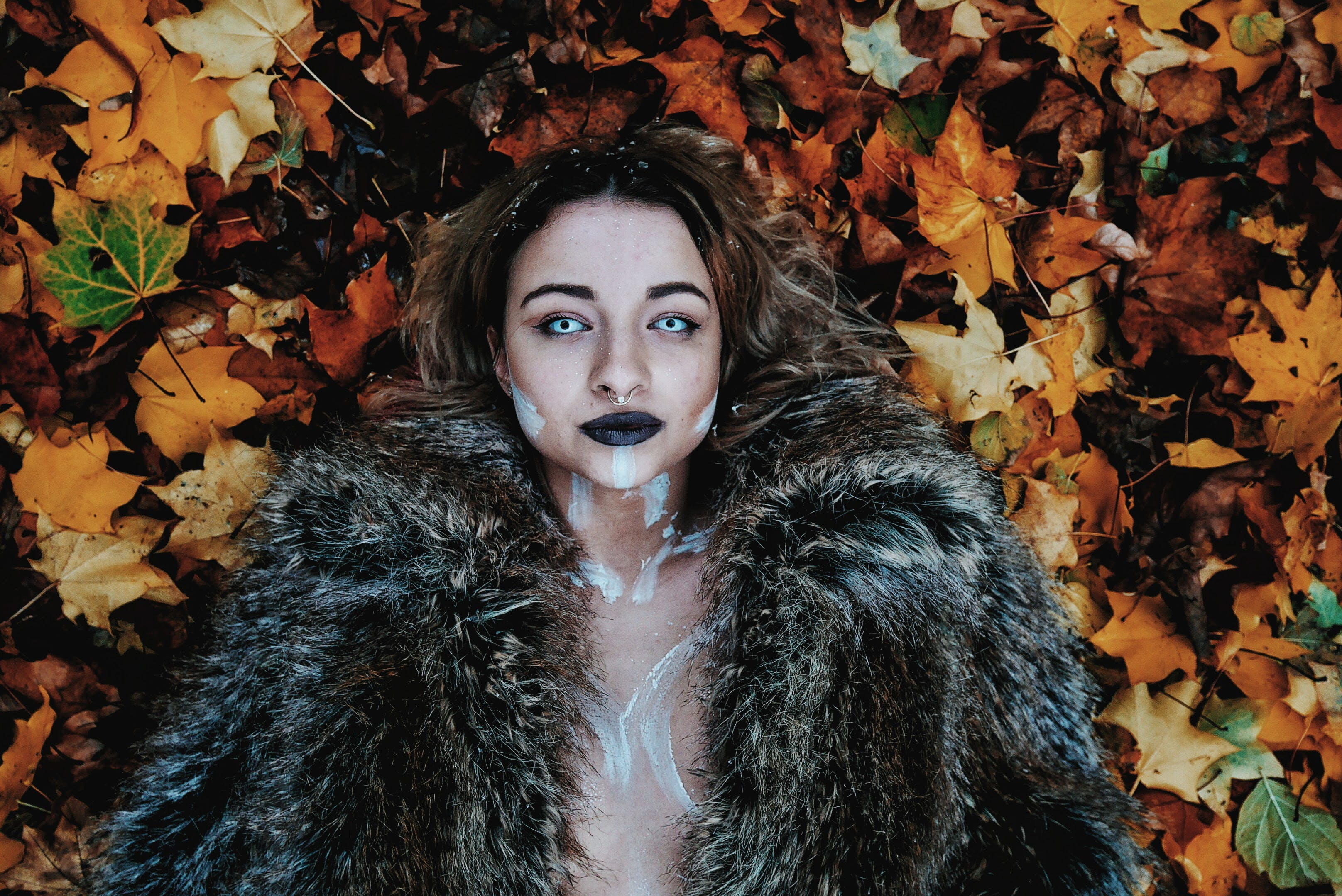 Woman in Black Fur Coat Laying on Brown Maple Leaves