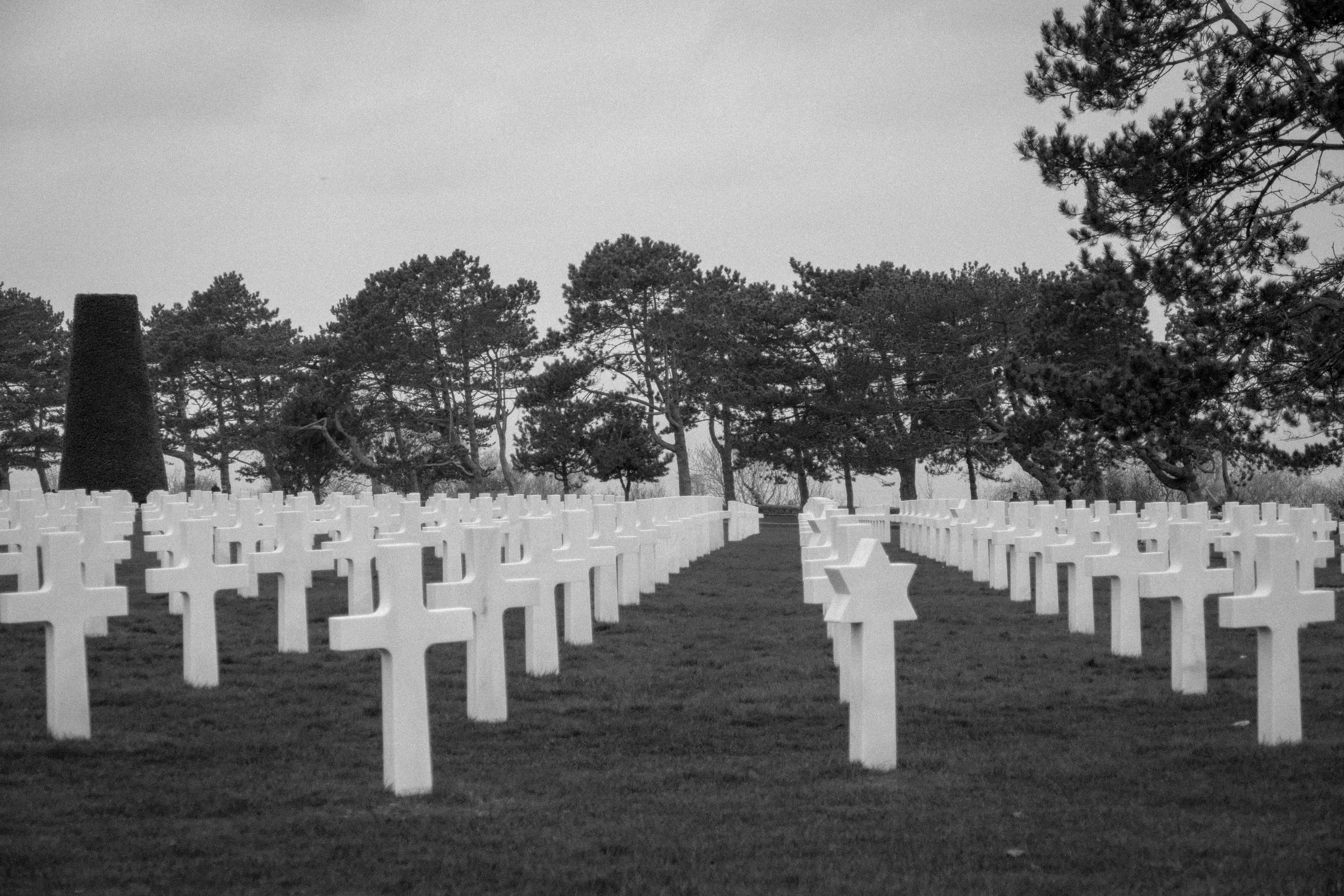 Free stock photo of dead, normandy
