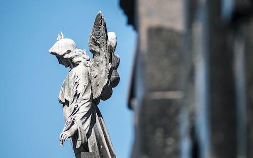 墳墓, 天使, 雕像 的 免費圖庫相片