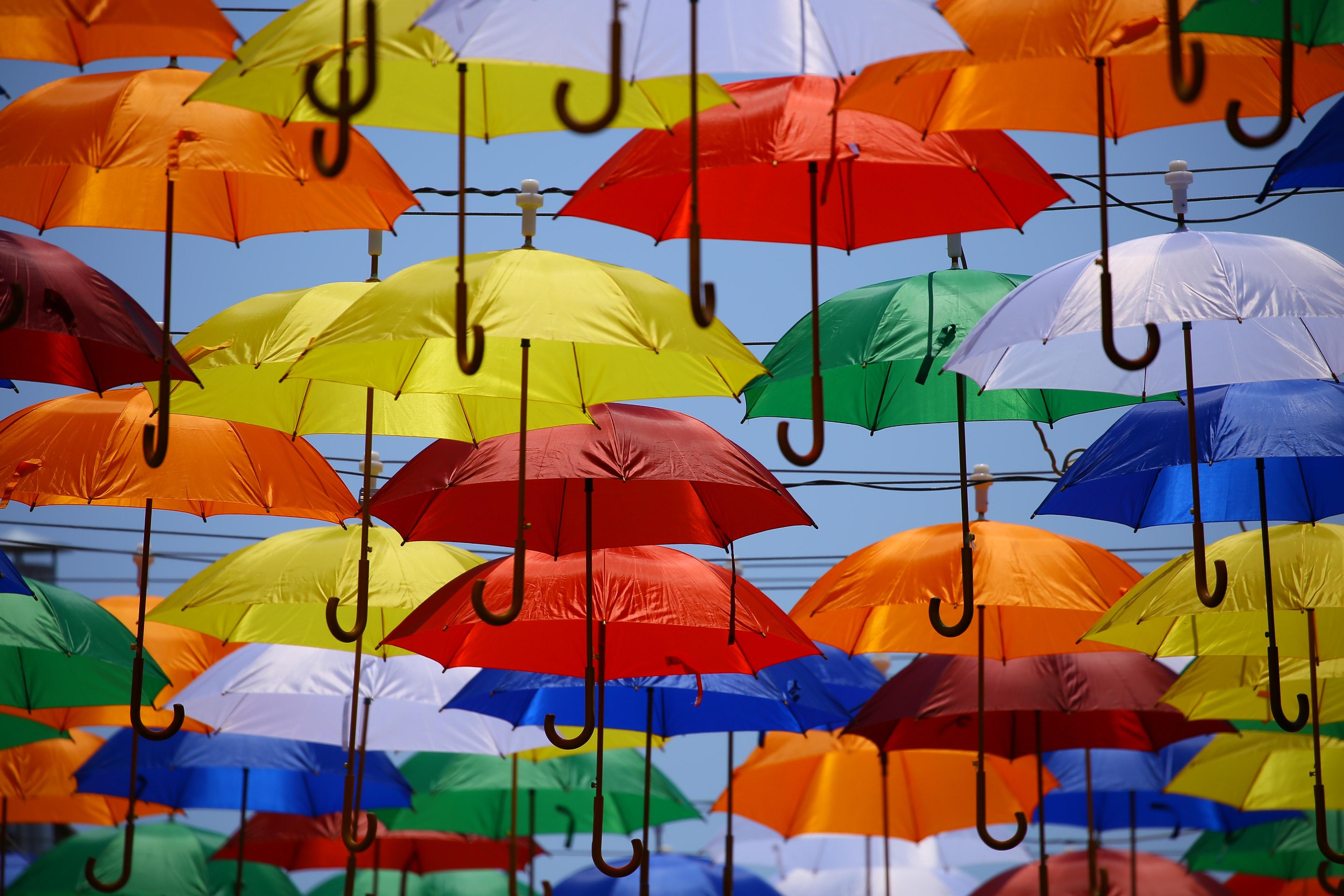 Umbrella lot · free stock photo