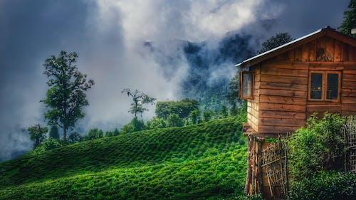 alan, arazi, Çiftlik, çiftlik evi içeren Ücretsiz stok fotoğraf