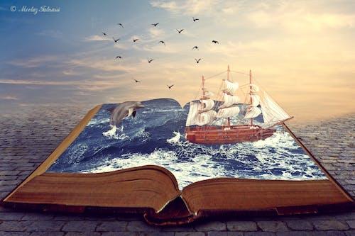 Gratis arkivbilde med delfin, oransje himmel, sjø, skip