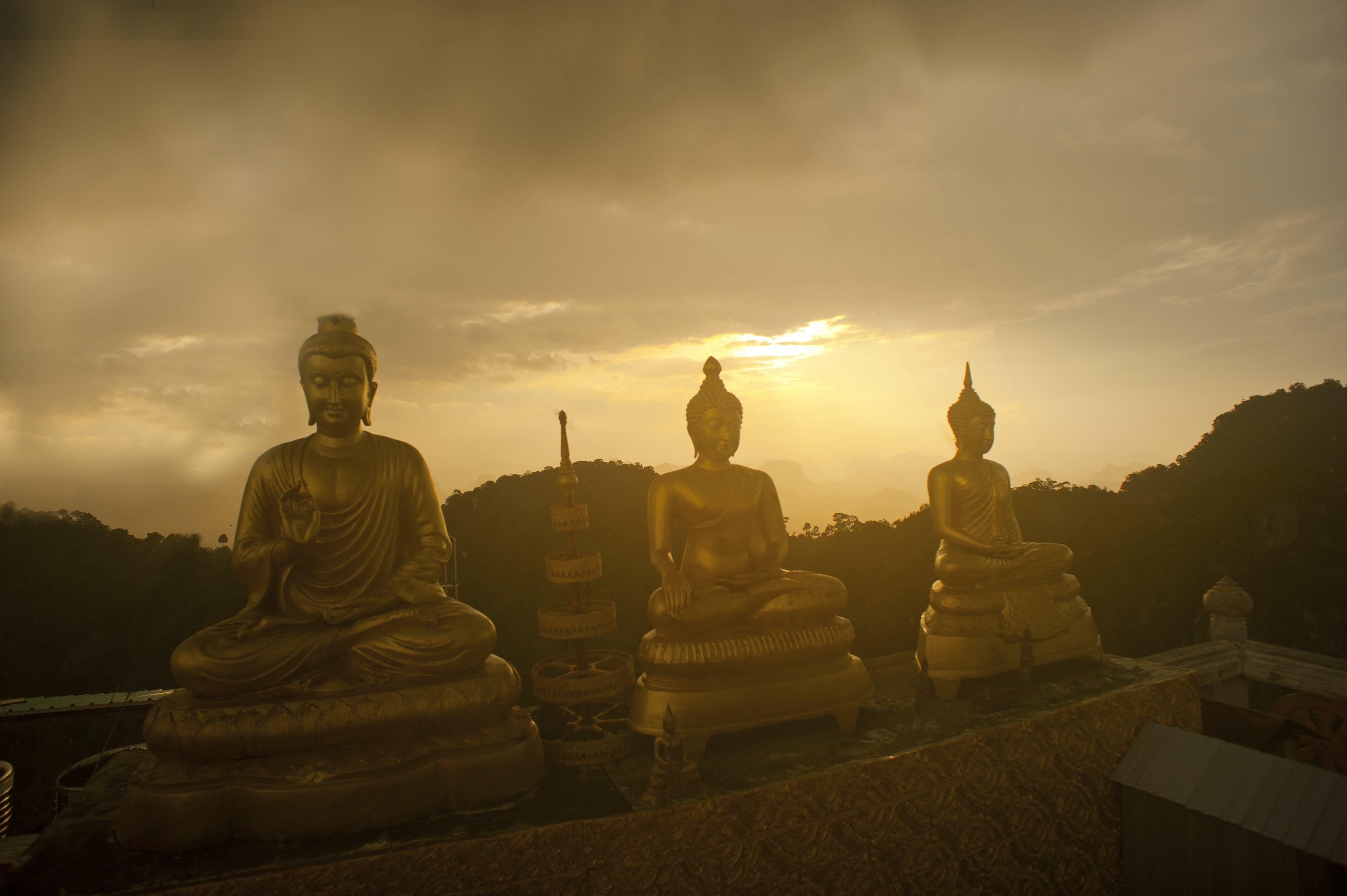 Free stock photo of sunset, religion, thailand, buddha