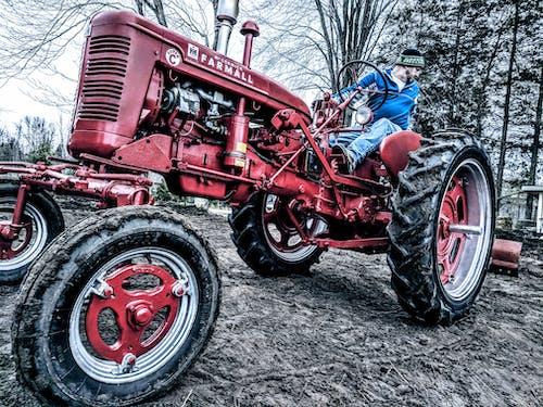 farmall, 골동품, 농부, 농업의 무료 스톡 사진