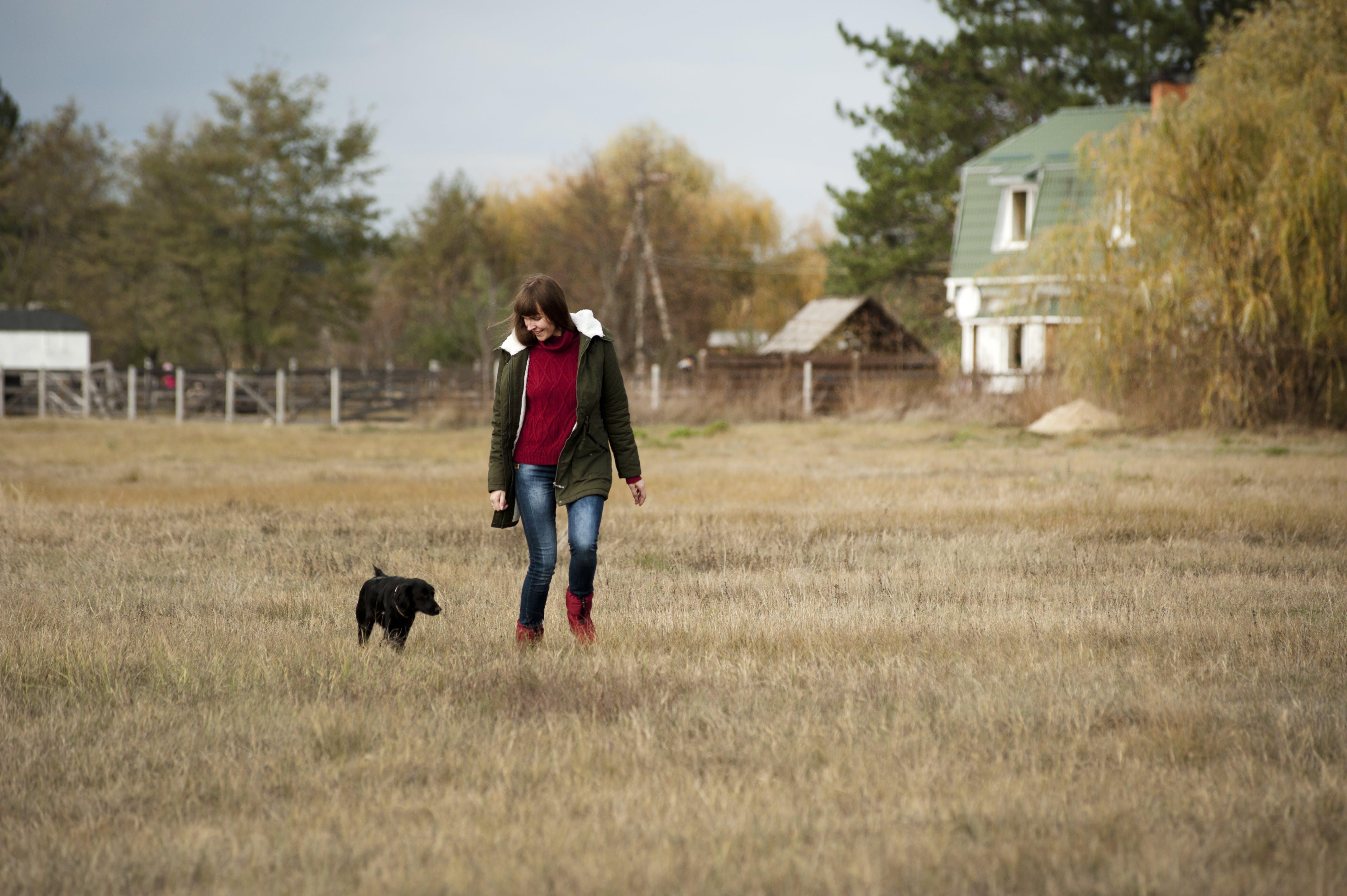 Woman Wearing Brown Zip-up Jacket and Blue Denim Jeans Walking Beside Short-coated Black Dog at Daytime