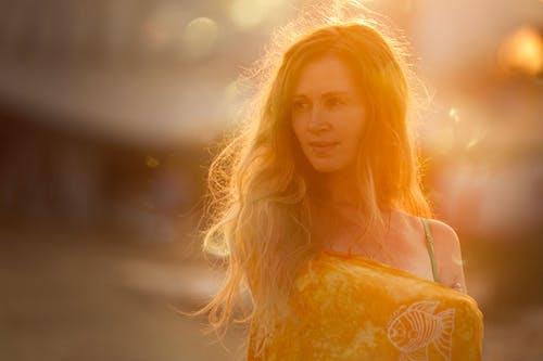 Kostnadsfri bild av bakgrundsbelyst, blond, dagsljus, färg