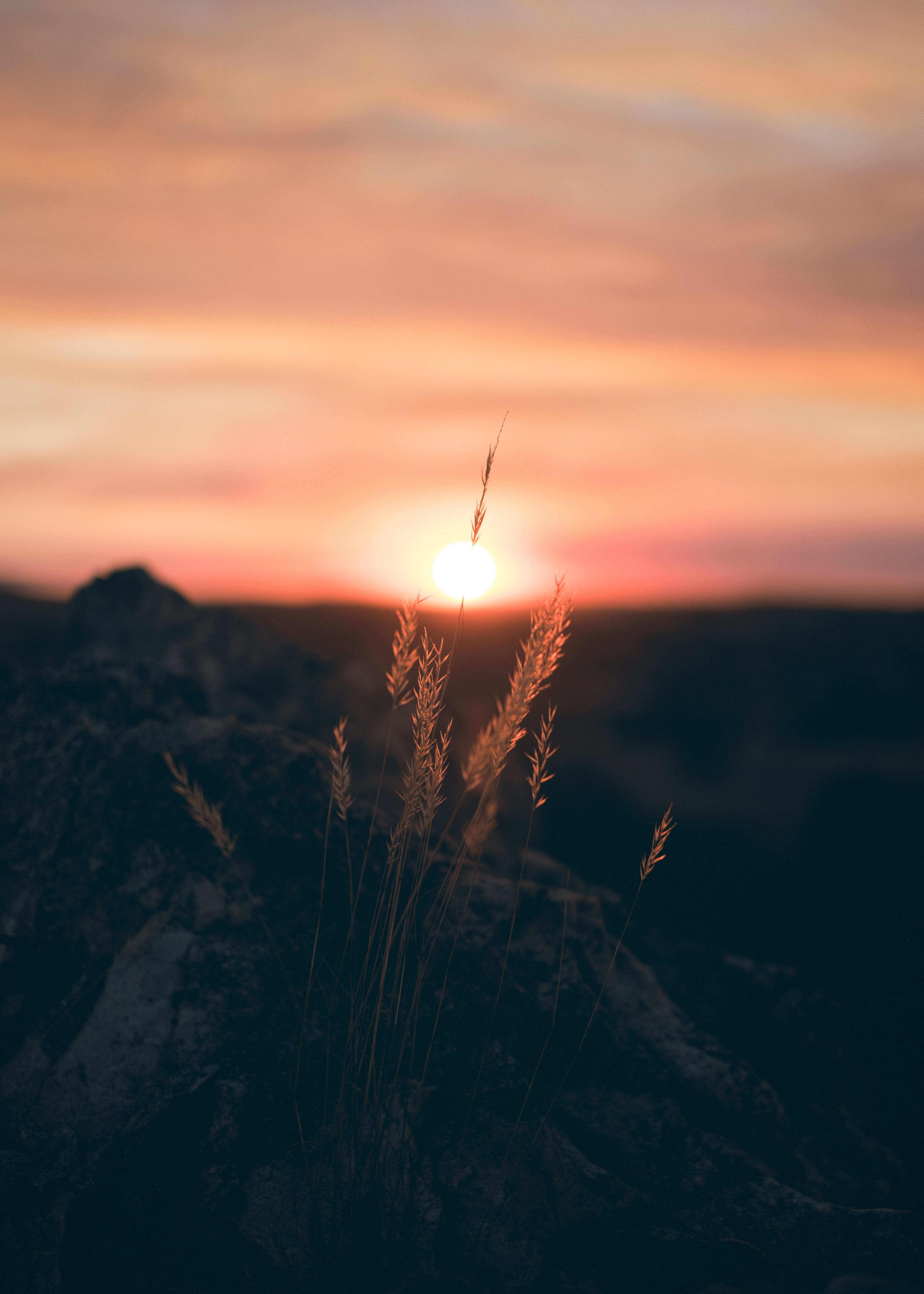 Foto profissional grátis de alvorecer, céu, iluminado por trás, nascer do sol