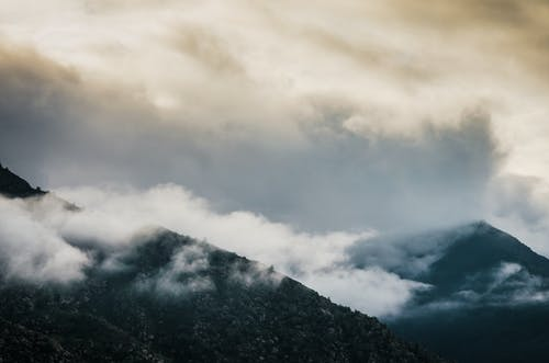 Foto d'estoc gratuïta de amb boira, boira, llum del dia, muntanya