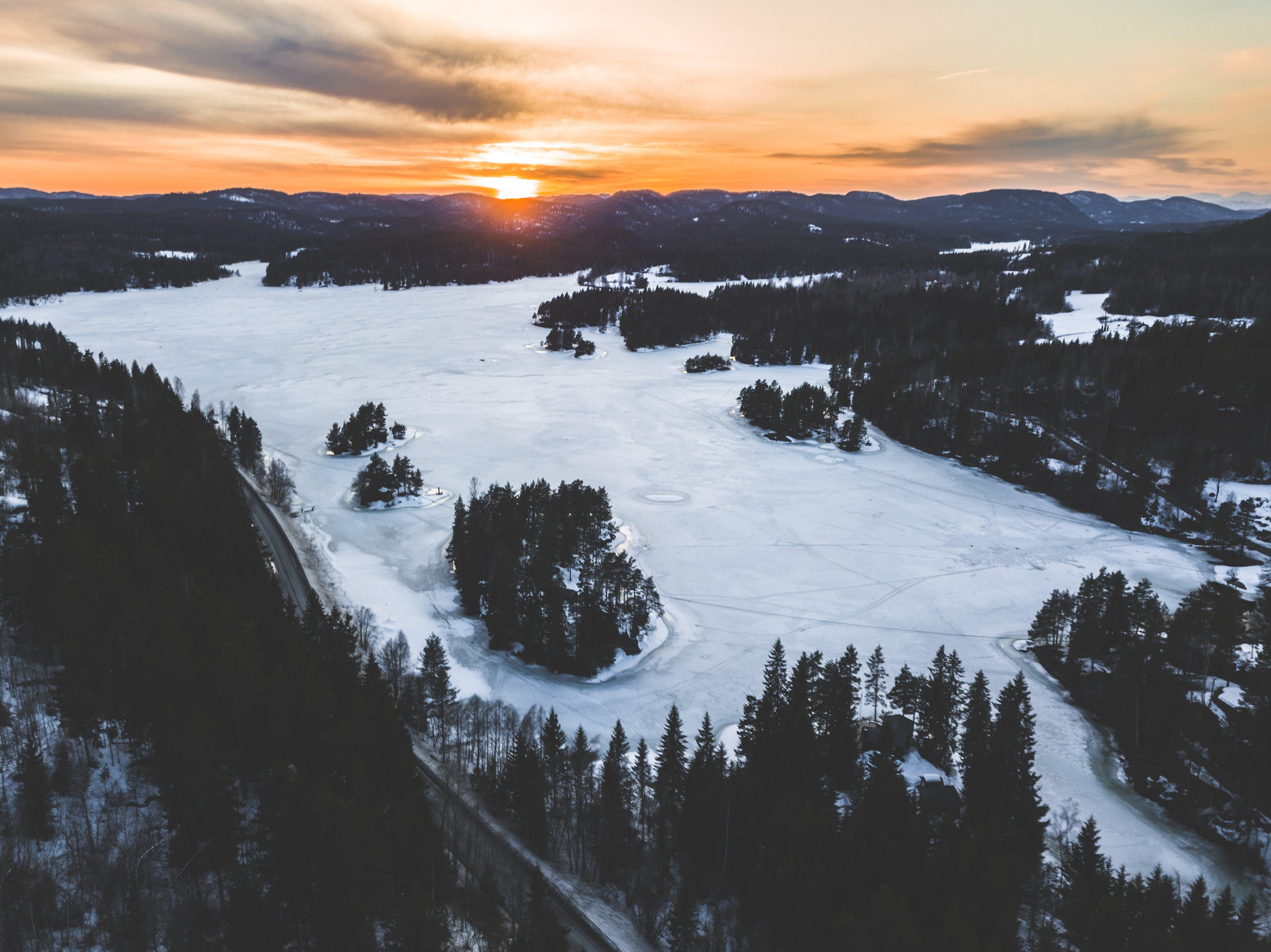 Snowfield Near Green Trees in Aerial Shot