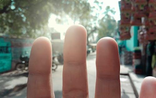 Foto d'estoc gratuïta de desenfocament, dit, dits