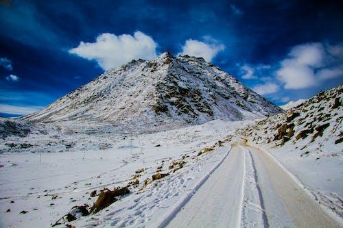 감기, 거리, 겨울, 경치의 무료 스톡 사진