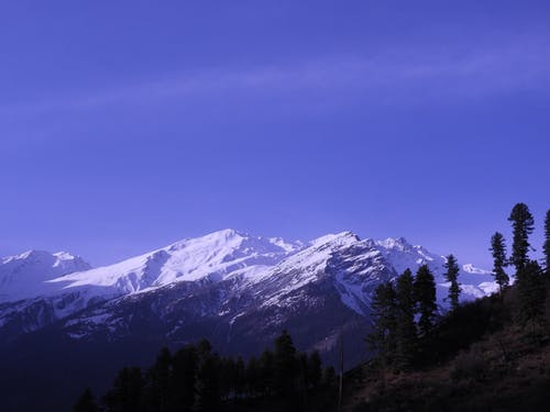 Gratis stockfoto met altitude, berg, bergtop, boom