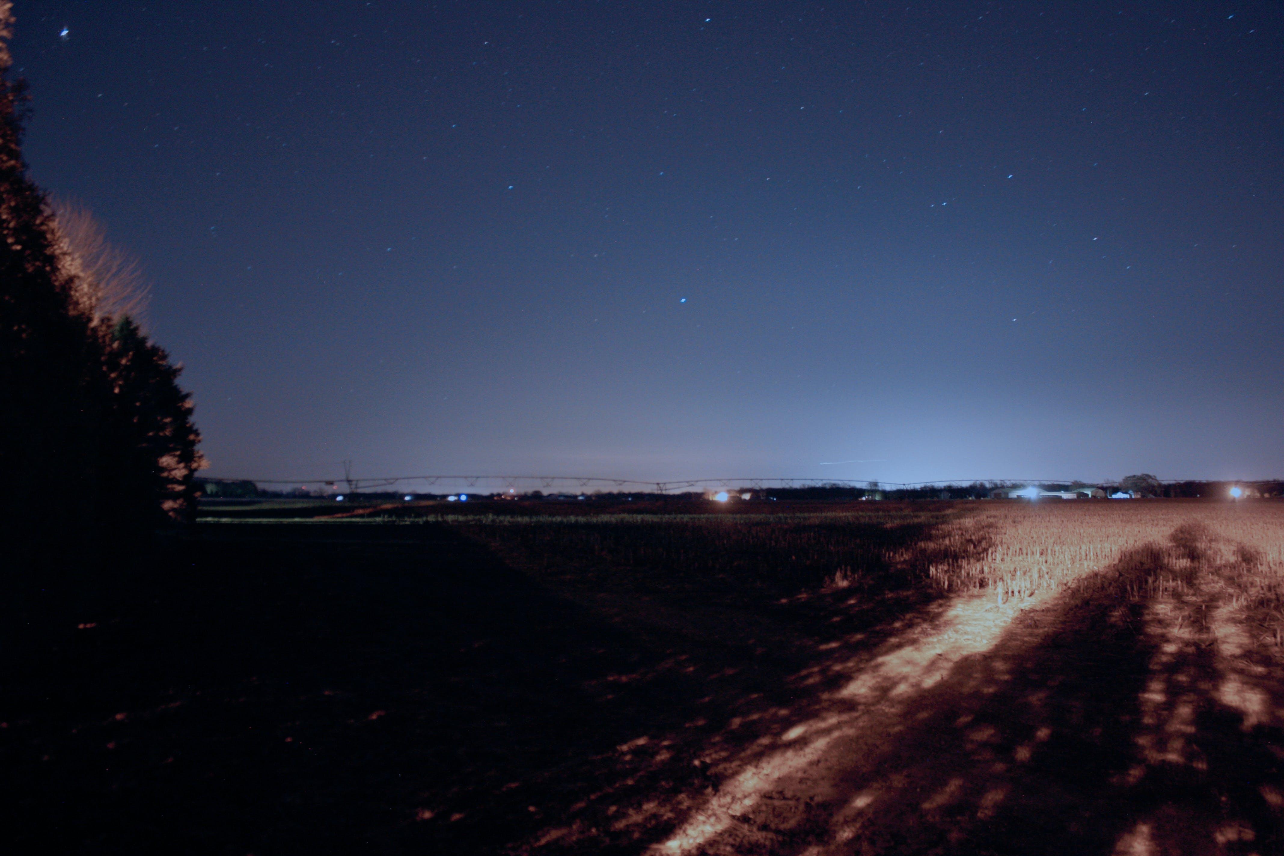 Free stock photo of field, moon, night, sky