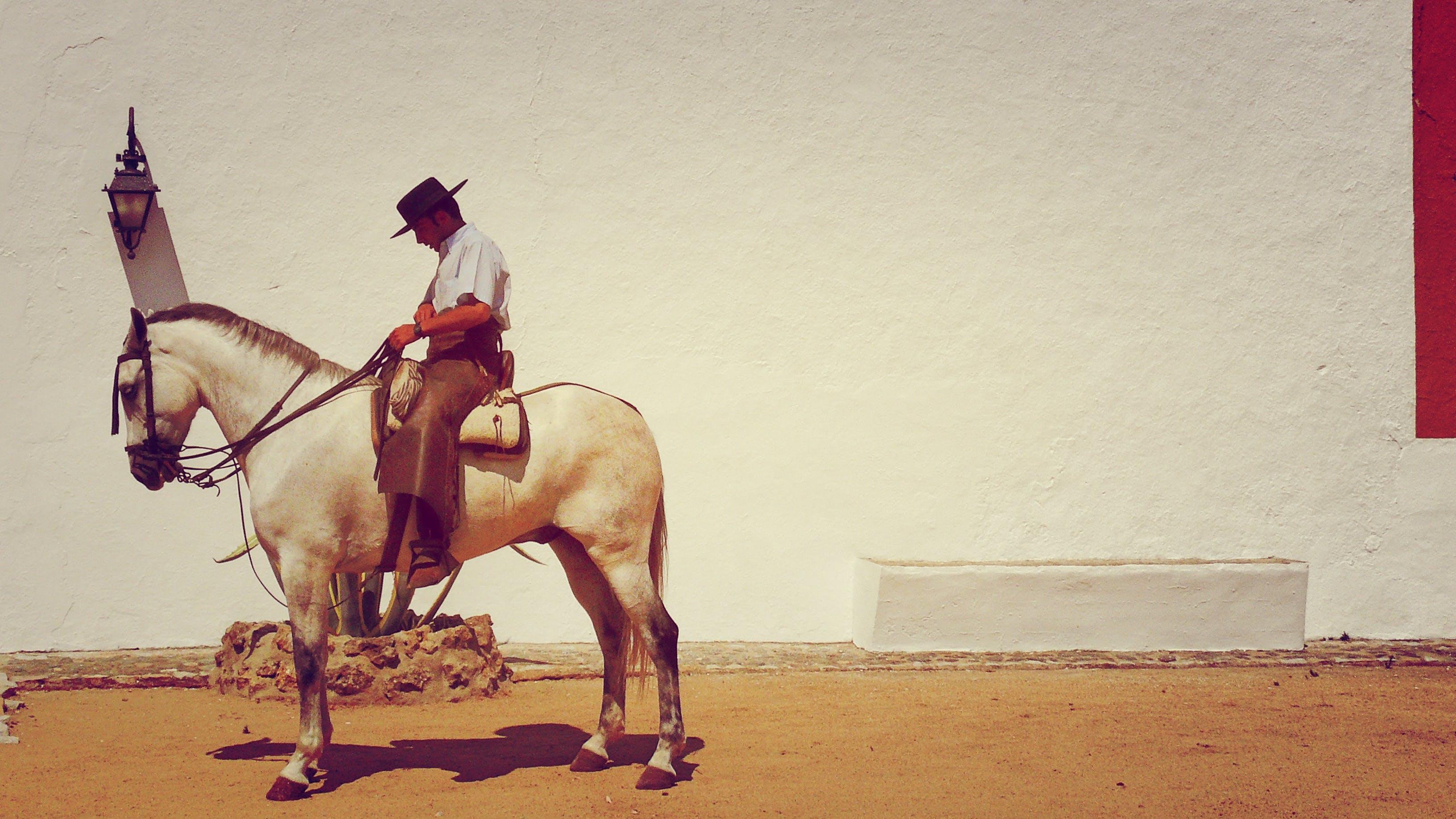 Horseman Near White Wall Fence Photograph