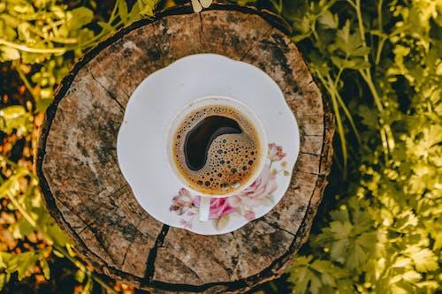 그루터기, 나무, 도기, 블랙 커피의 무료 스톡 사진