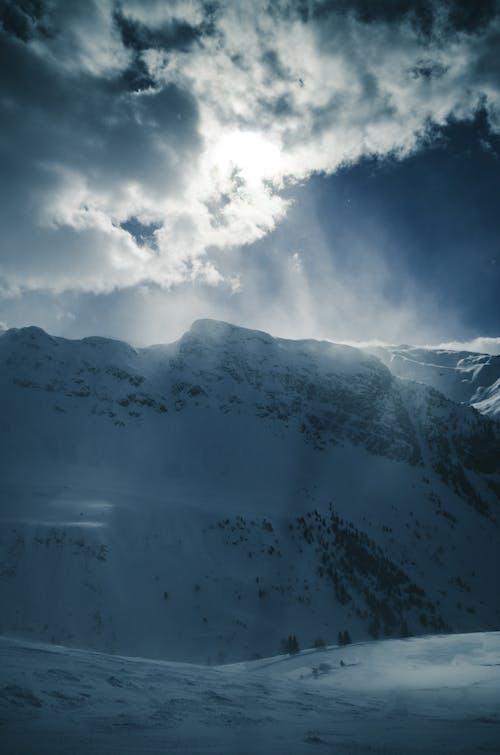 Imagine de stoc gratuită din ceață, cer, frig, iarnă