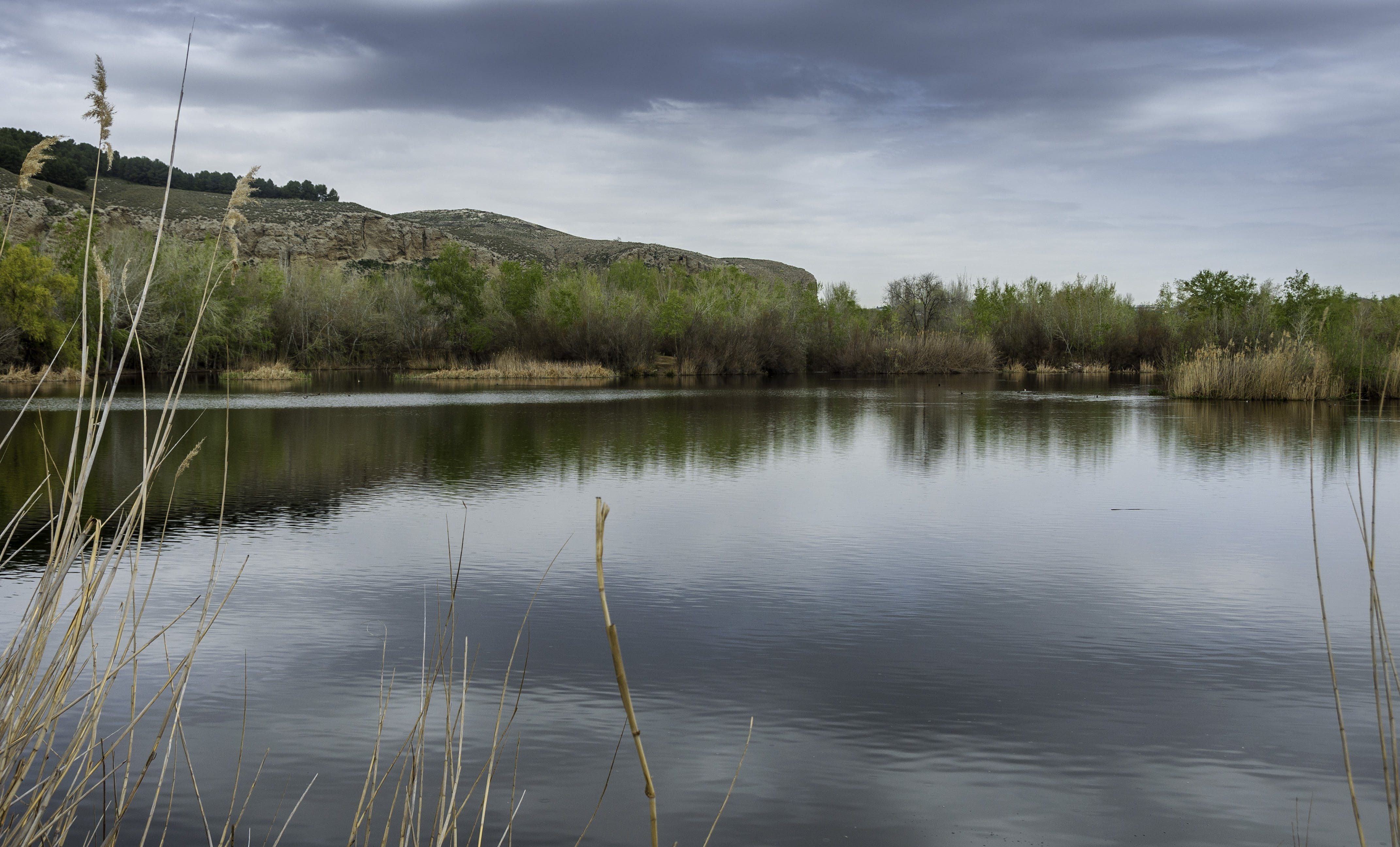 Free stock photo of lagoon