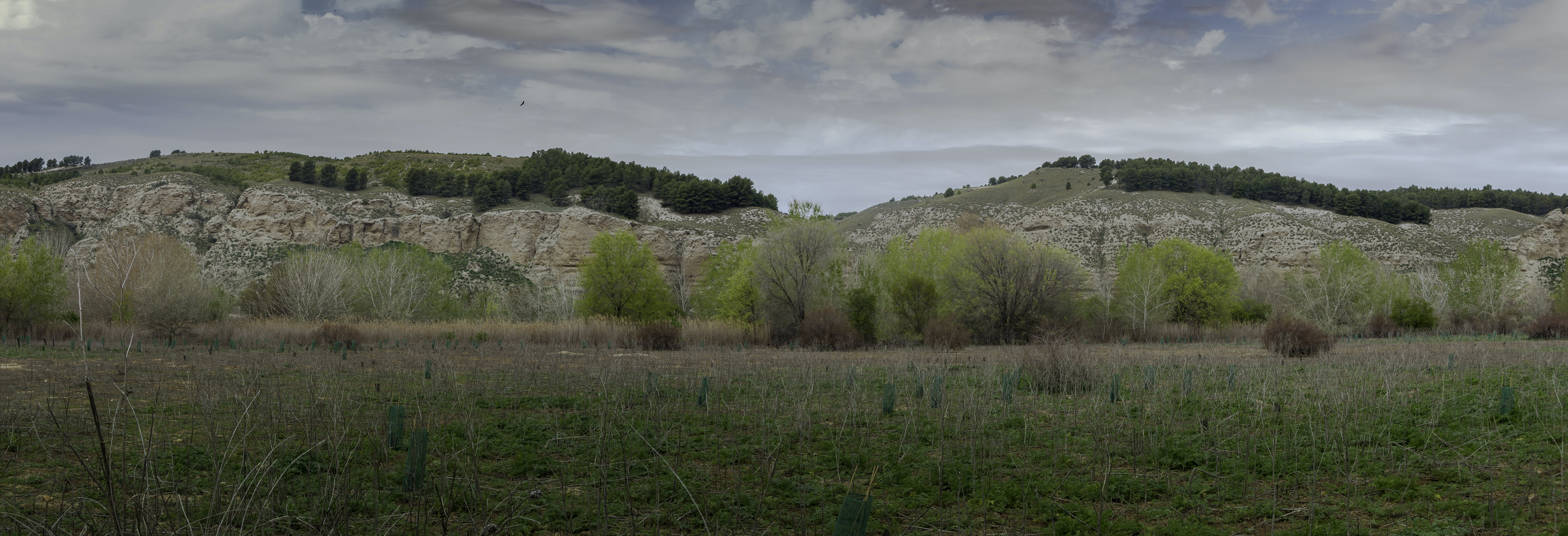 Free stock photo of the other side of Manzanares river
