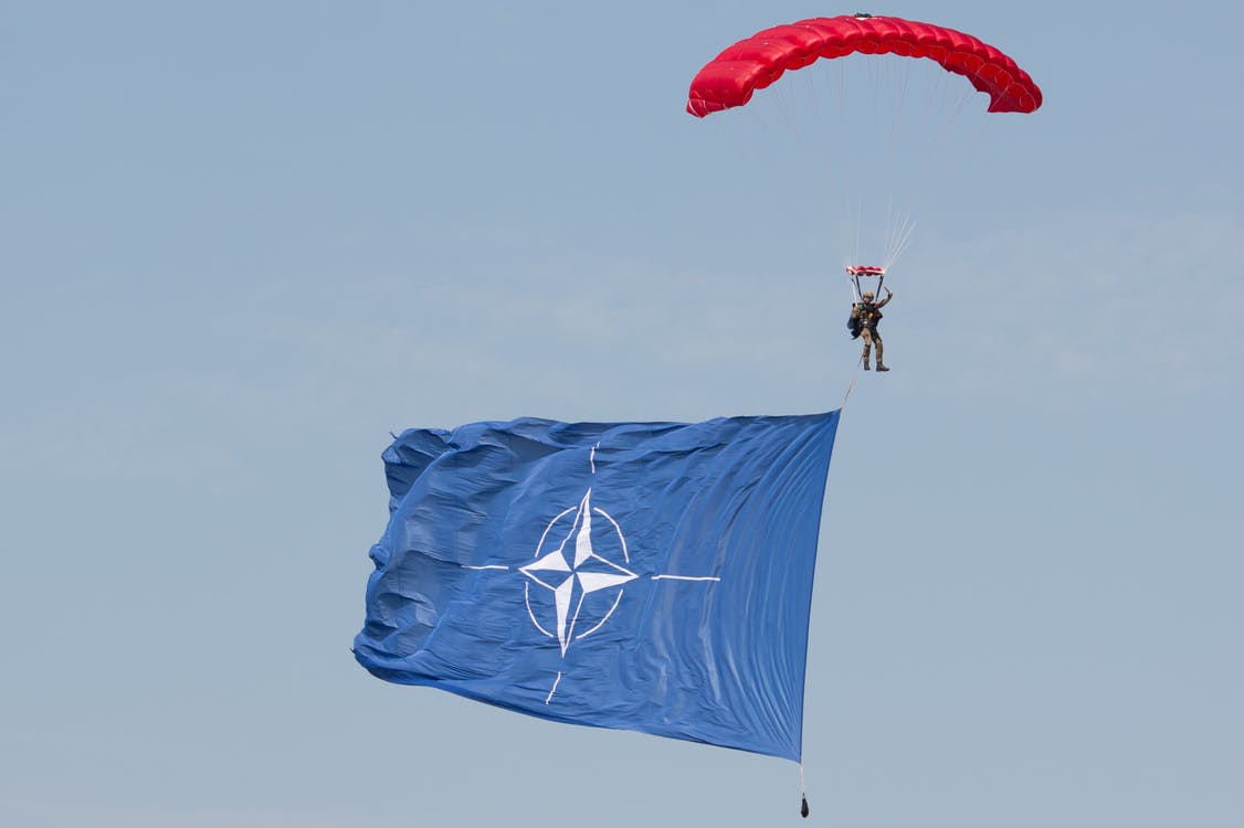 parachutist, skydiver