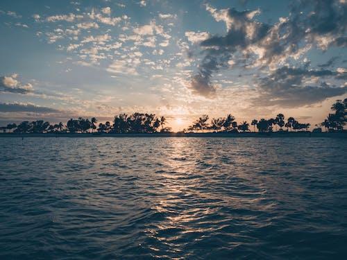 Безкоштовне стокове фото на тему «безтурботний, берег моря, брижі, вода»