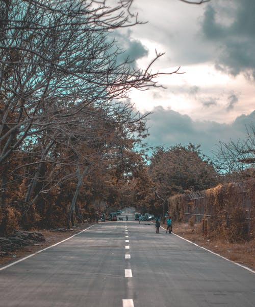 Gratis stockfoto met asfalt, begeleiding, bewolkte lucht, bomen