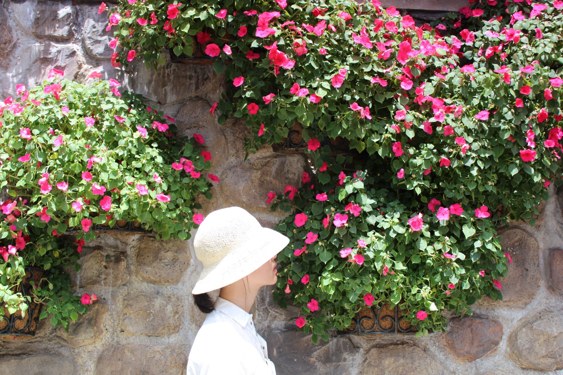 Woman Wearing White Bucket Hat With White Top Beside Pink Petaled Flower at Daytime