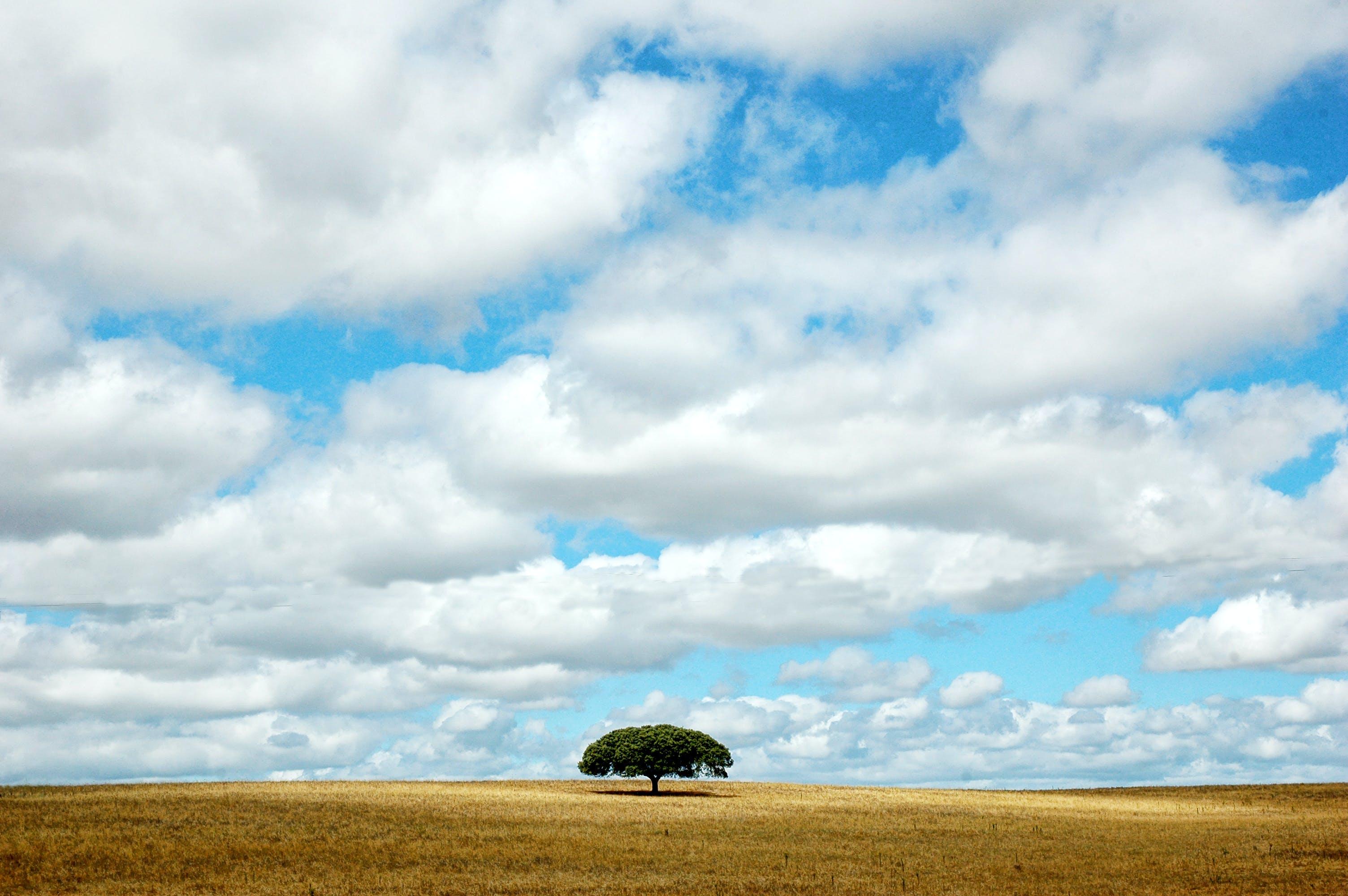 Free stock photo of alentejo, cloudy sky, landscape, minimal