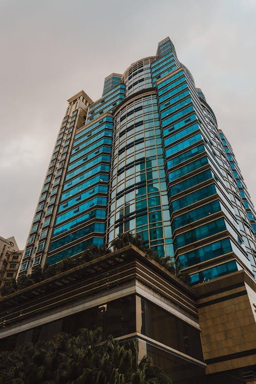 ablakok, alacsony szögű fényképezés, építészet