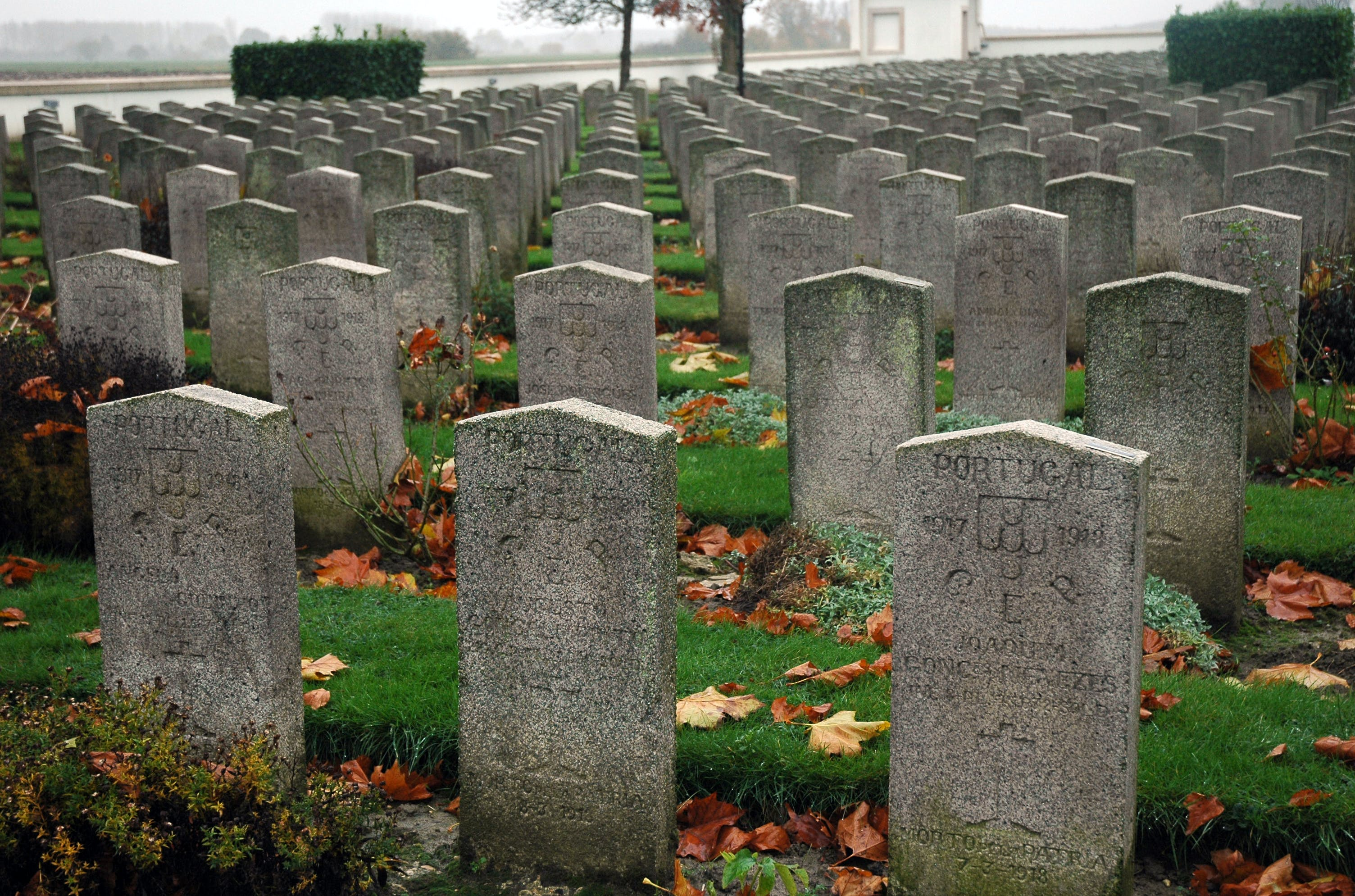 Free stock photo of cemetery, IWar, portuguese, soldiers
