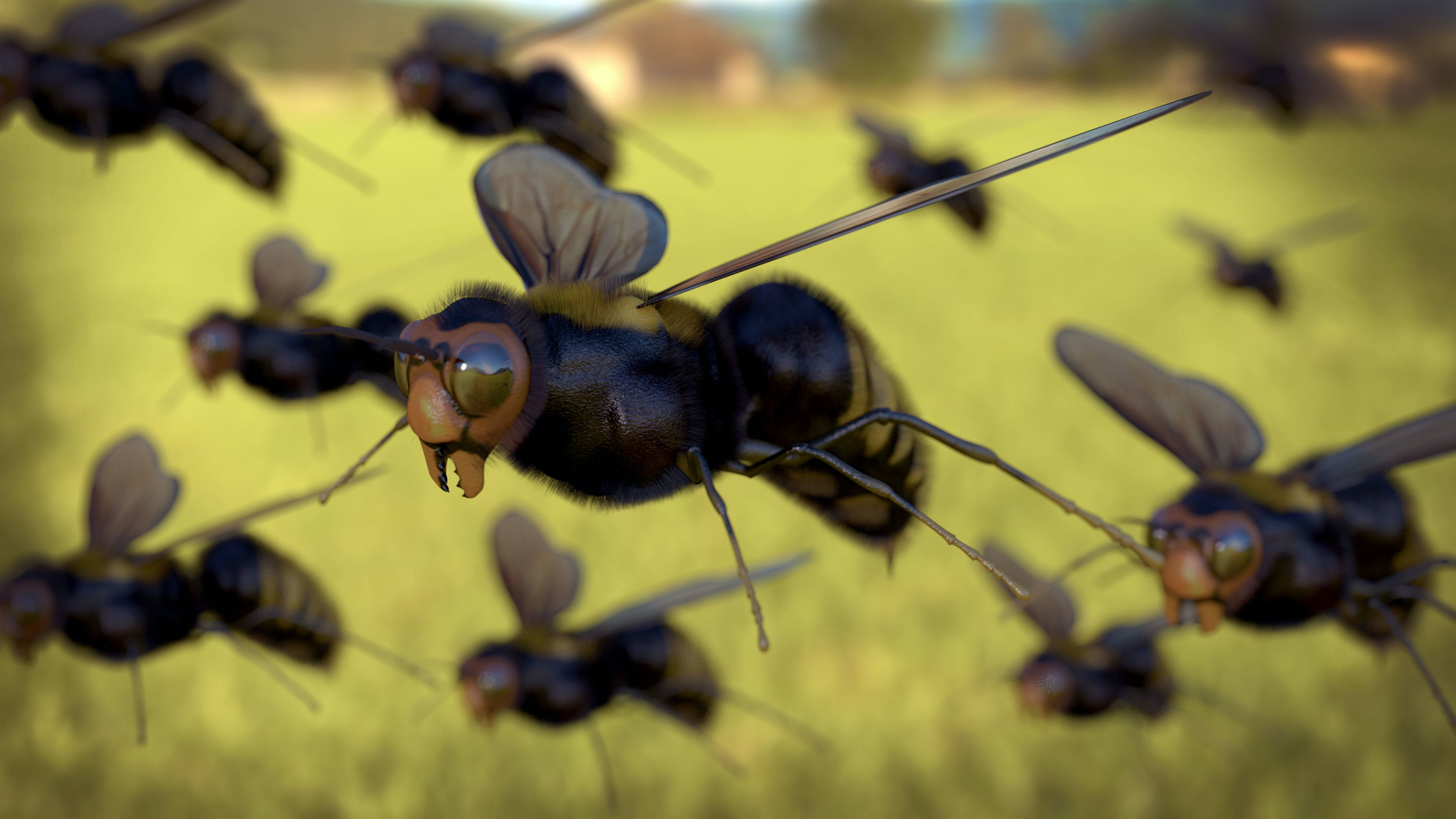 Kostenloses Stock Foto zu biene, fliegen, honigbiene, insekten