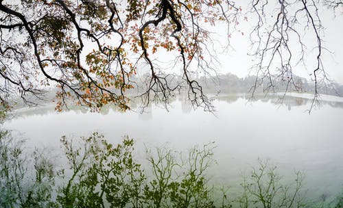 Free stock photo of fog, foggy, Hanoi, Hoan Kiem Lake