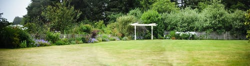 Immagine gratuita di giardino occidentale