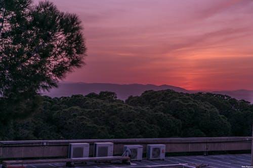 Безкоштовне стокове фото на тему «відпочинок, праця, схід сонця»