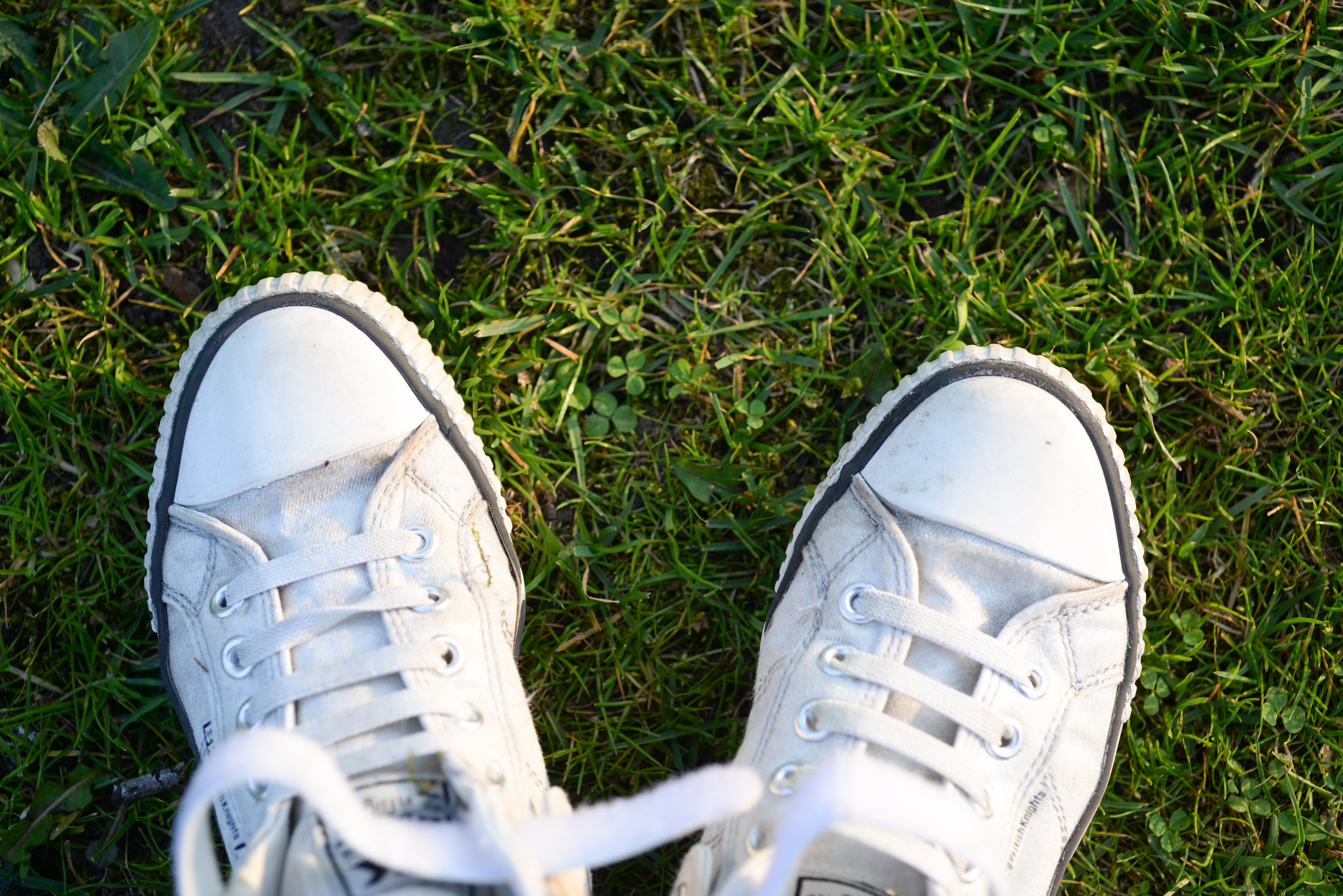 Pair of White Lace-up Sneakers on Top Green Grass