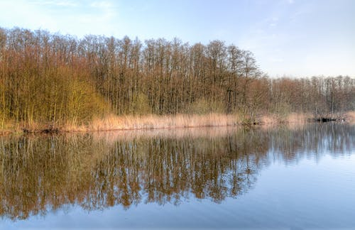 Gratis arkivbilde med årstid, dagslys, landskap, miljø