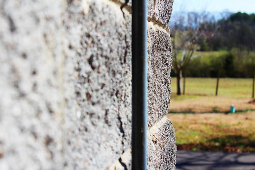 Free stock photo of fence, park, wall