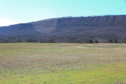 Free stock photo of mountain, pasture, sunny