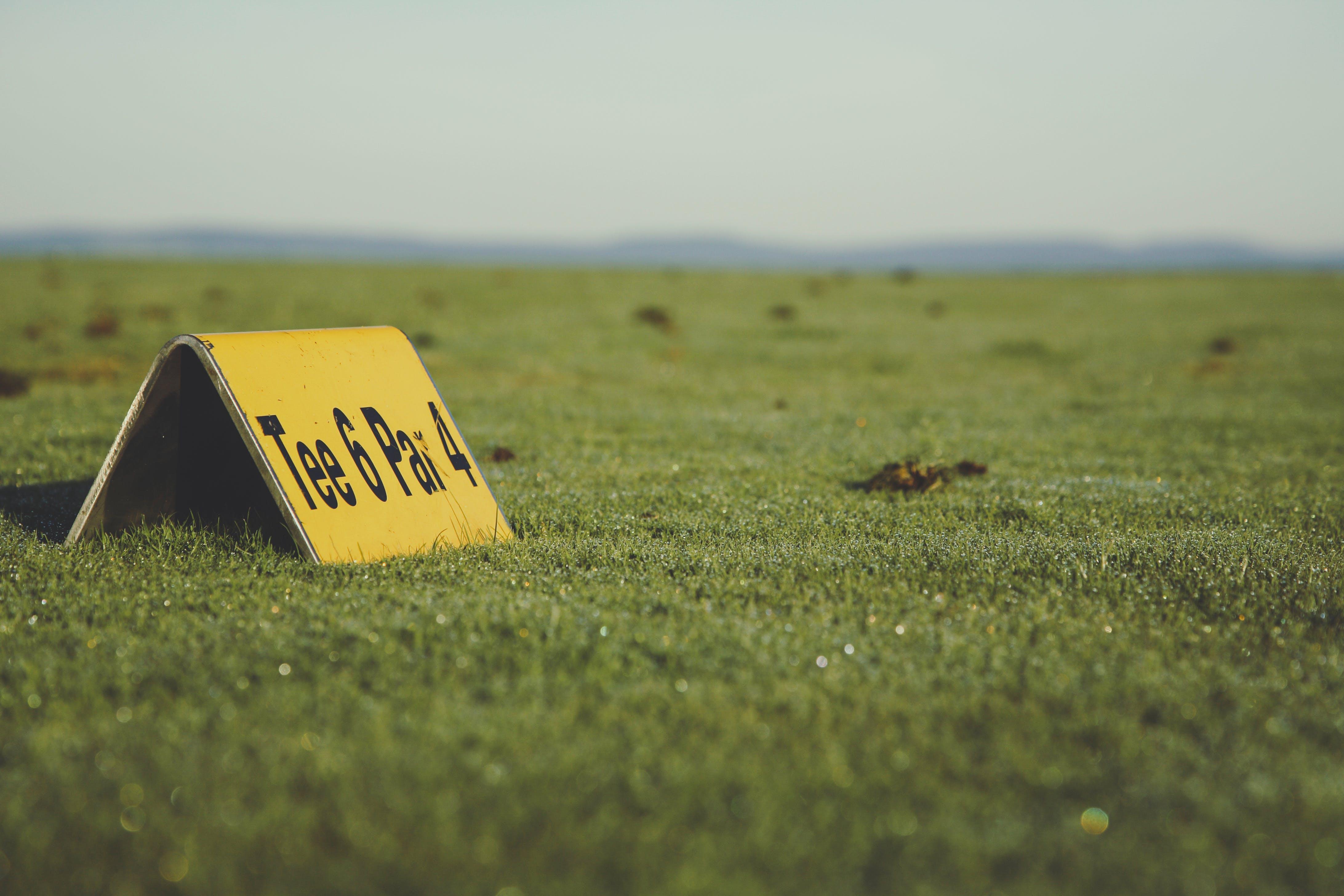 Gratis arkivbilde med åker, bakken, gress, grønn