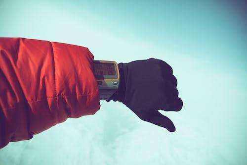 คลังภาพถ่ายฟรี ของ ชม, นาฬิกาข้อมือ, แขน