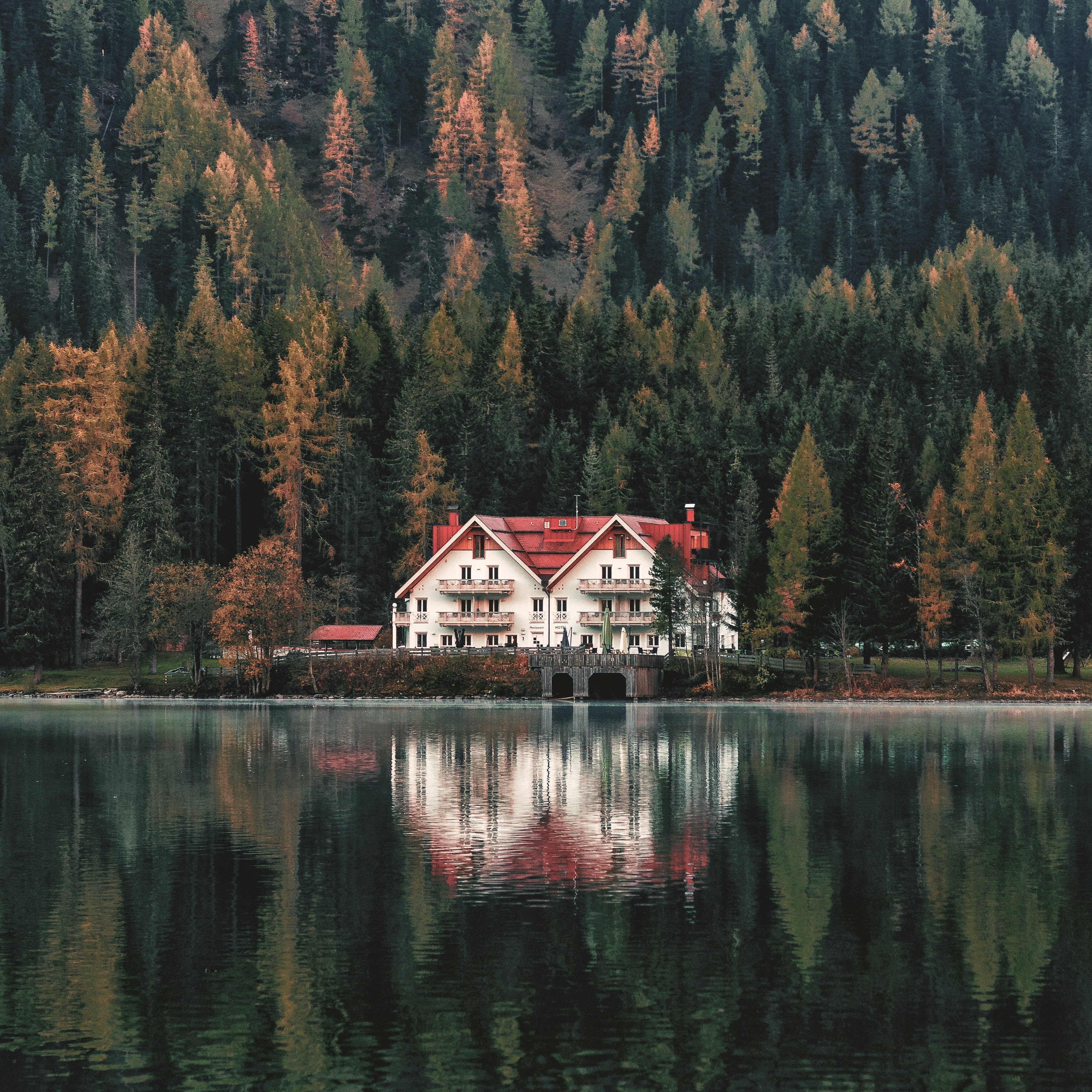 White and Orange House Beside Forest and Body of Water