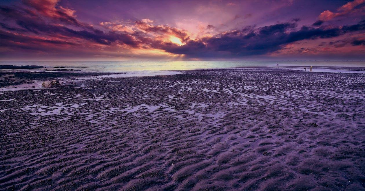 ακτή, άμμος, απόγευμα