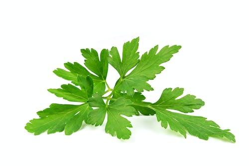 Immagine gratuita di antiossidanti, aroma, aromatico, arti culinarie
