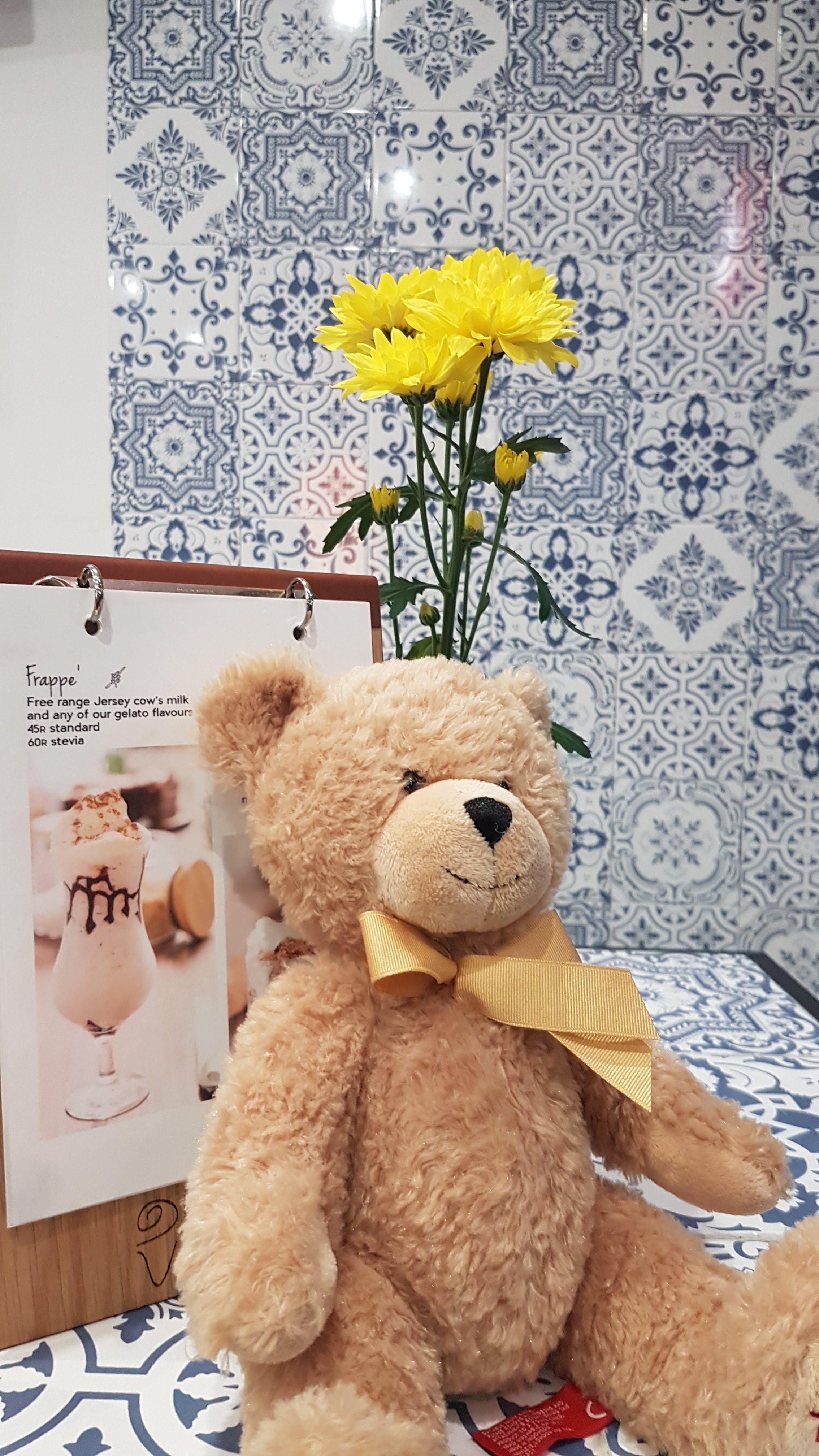 Kostenloses Stock Foto zu eis, gänseblümchen, gelato, gelbe blumen