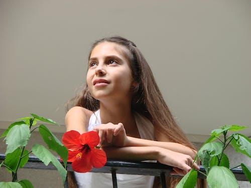 คลังภาพถ่ายฟรี ของ ชุดเดรสสีขาว, เด็กผู้หญิงถือดอกไม้สีแดงบนระเบียง