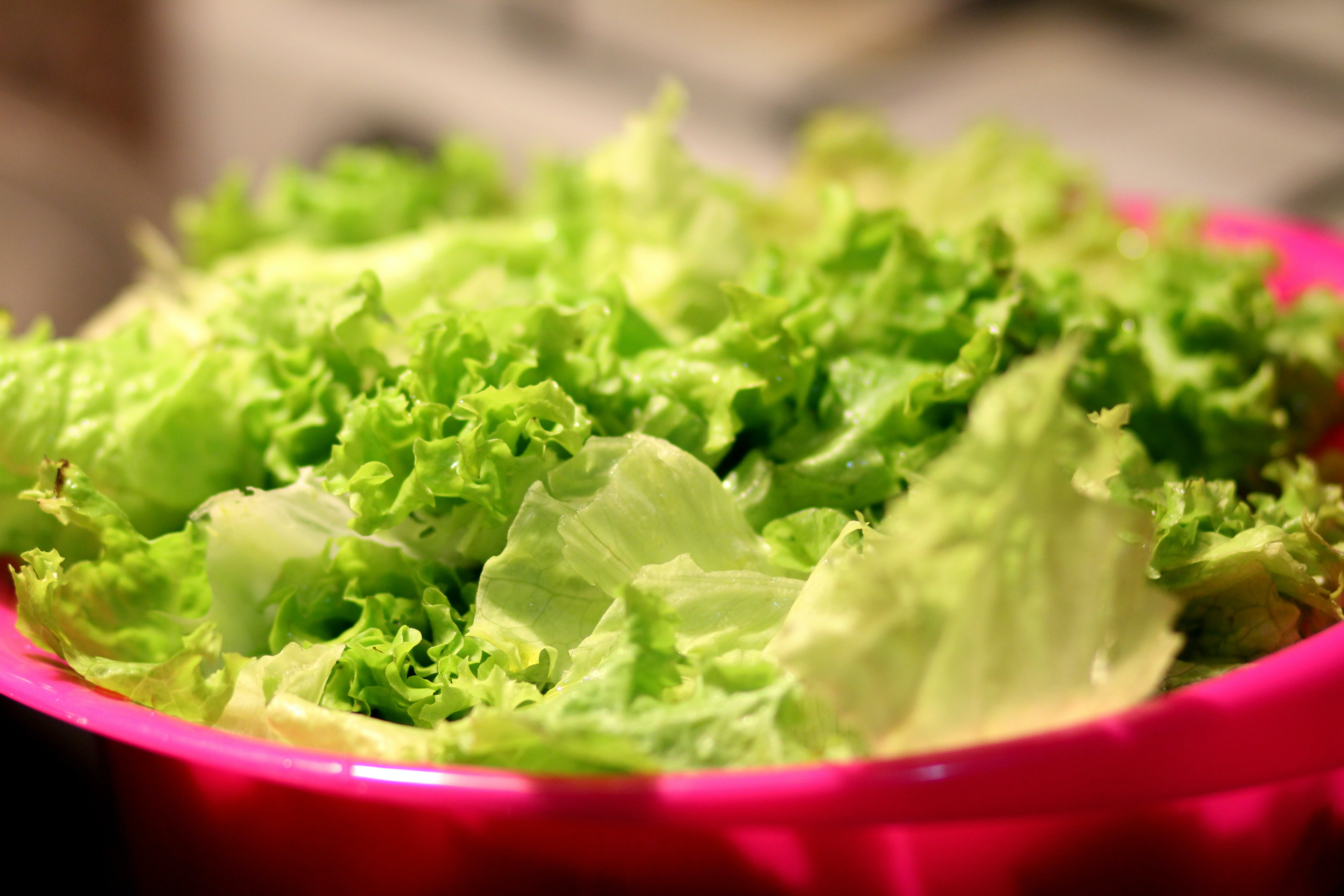 Green and White Lettuce
