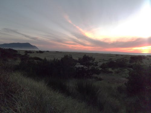 Free stock photo of oregon evening light