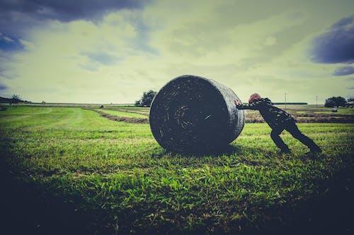 Základová fotografie zdarma na téma balík sena, farma, hřiště, osoba
